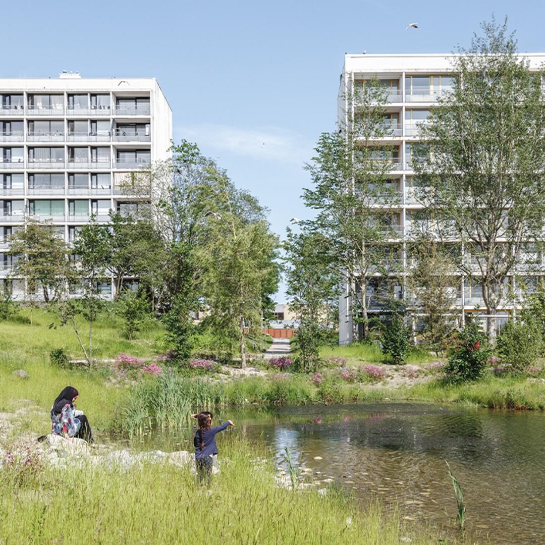 Gellerup Ny Naturpark